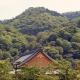 Tenryuji - Kyoto