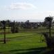rives du Nil