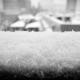Neige à Tokyo - février 2014
